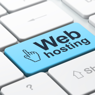 Website Hosting Providers – Look for a Newbie Friendly Site Host