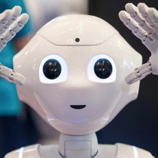 Are You Producing The Child Robot? See What Voice Chip Vendors Say (One)