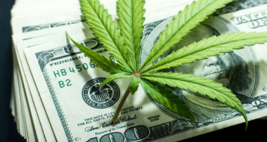 What Should You Know Before Investing In Marijuana Stocks?