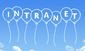 What the Intranet Means toYour Company